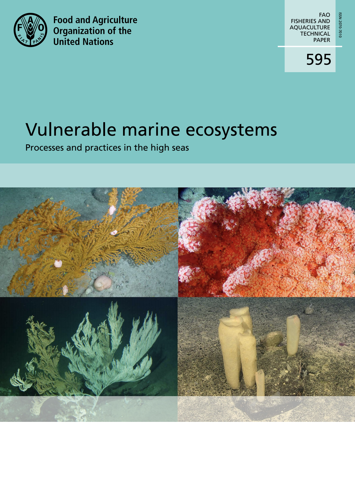Vulnerable marine ecosystems: Processes and practices in the high seas